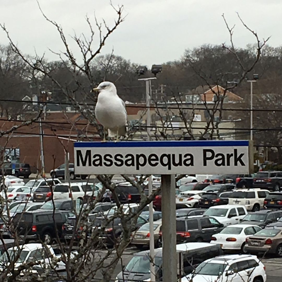 massapequa park train station sign